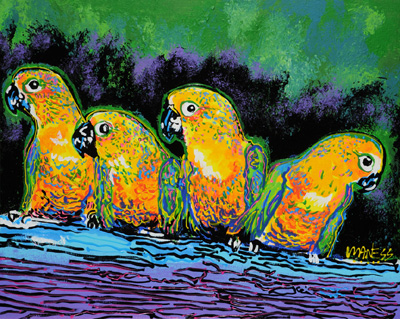 3 Parrots with ADHD - 24x30 - ?
